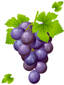 grape-free-download-png