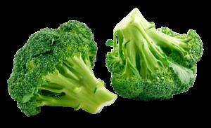 broccoli-png-image_png00237