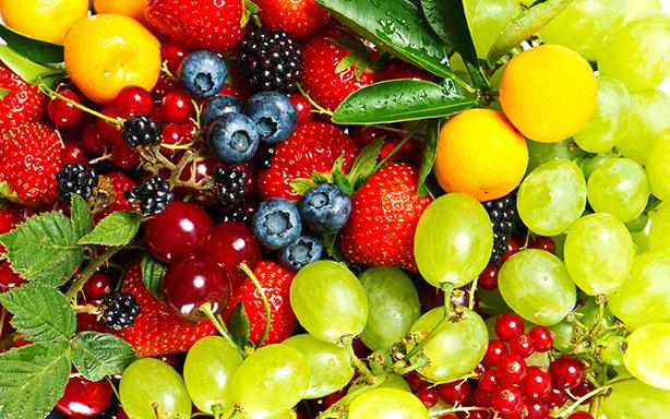 ELSAADA | Fruits & Vegetables Supplier